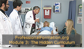 The Hidden Curriculum and Professional Formation