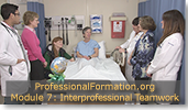 Interprofessional Teamwork in Healthcare